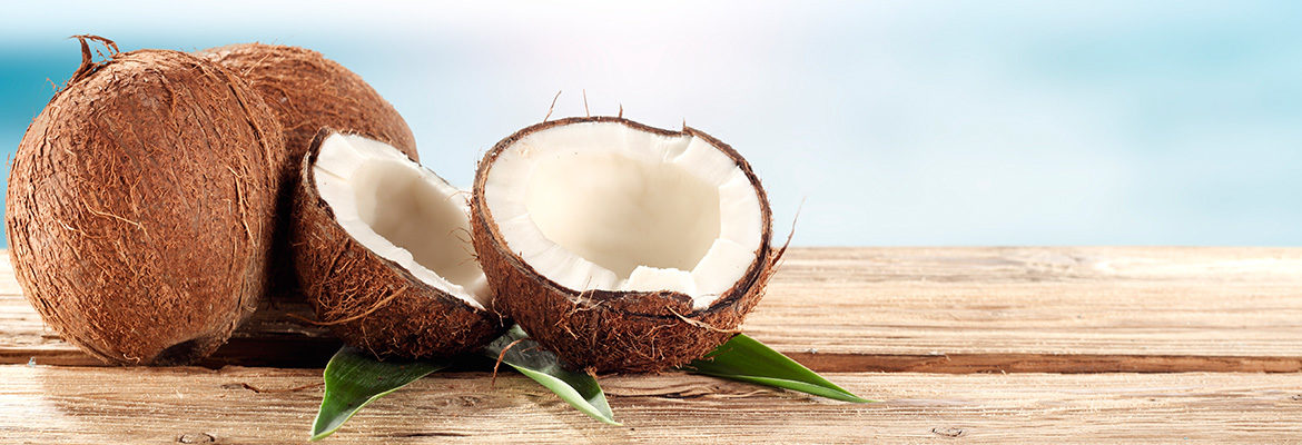coconut.blog_.header.01.02.16-1170x400