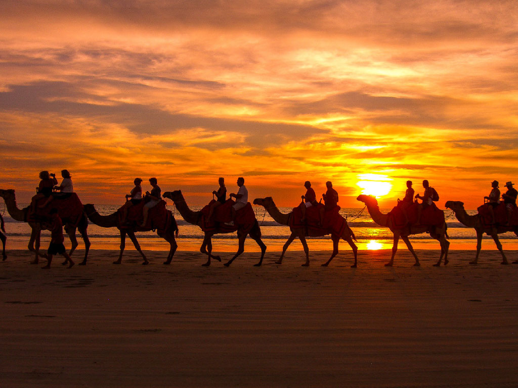 cable-beach-camels-at-sunset-1024x768